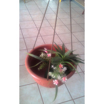 Maceta Colgante De Plastico - Decoracion Jardin Flores Ata