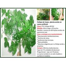 Decoracion Con Plantas Enredaderas Placas De Pasto Omm