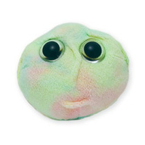 Peluche Giant Microbes Microbios Gigantes Célula Madre
