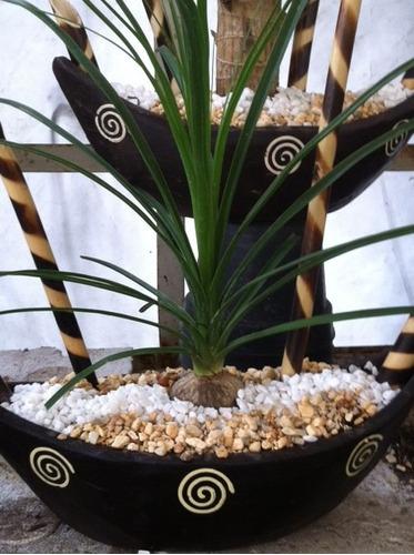 Macetas con plantas naturales para recuerdos centros de - Macetas para centros de mesa ...