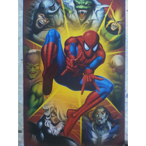 Spiderman & Villanos Poster No Batman,superman,flash