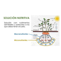 Solución Nutritiva Hidroponi 1000g=2000lt Plantas Hortalizas