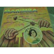 L.p.marimba
