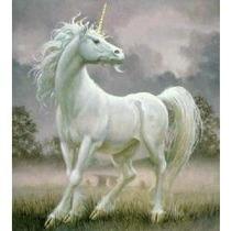 Libro El Unicornio, Javier Tomeo.