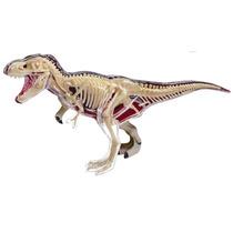Tb 4d Vision Tyrannosaurus Rex Anatomy Model