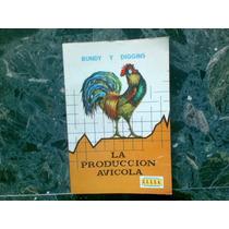 La Producción Avicola - Bundy Y Diggins