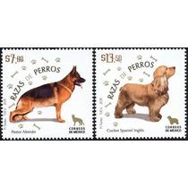 2011 Mèxico Raza De Perros Coker Y Pastor Alemàn Nuevos