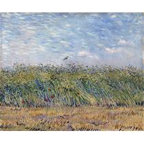 Lienzo Tela Campo De Trigo Con Perdiz Vincent Van Gogh 50x60