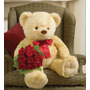 Peluche Oso Enorme 75 Cms Marca 1800 Flowers Osito