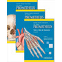 Libro Anatomia Prometheus 3 Tomos