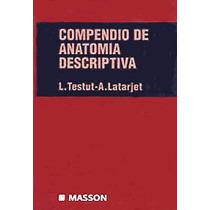 Compendio De Anatomía Descriptiva De Testut - Latajet Pdf