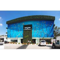 Oportunidad Local Plaza Cuajimalpa Para Oficina Consultorio