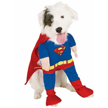 Mascotas Disfraz - Chihuahua