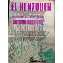 El Henequen . Una Planta Calumniada .