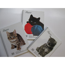 Cuaderno Profesional Kitten