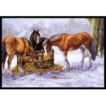 Caballos Que Comen El Heno En La Nieve Mat Interiores O Exte