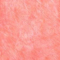 Muselina Telón Fondo Foto Vídeo Cowboystudio 3 X 6 Mts