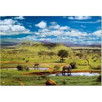 15152 Parque Nacional Tsavo Kenia Rompecabezas 500 Pzs Educa