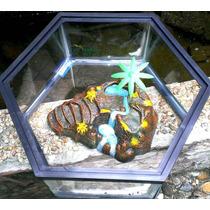 Tortuguero Hexagonal De Cristal Con Isla De Resina Central.