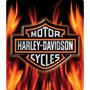 Harley Davidson Lamina Poster Resaltado Retro Vintage Origin