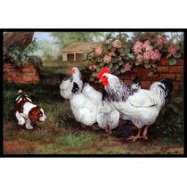 Pollos, Gallinas Y Del Perrito Mat Interiores O Exteriores D