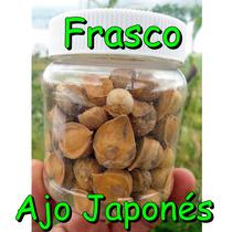 Ajo Japones Frasco Con 100 Ajos Ajo Chino Semilla Natural
