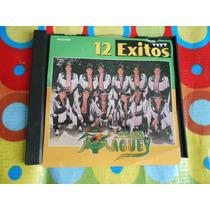 Banda Maguey Cd 12 Exitos 1996