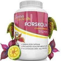 Extracto Forskolina Natural - Potente Quemador De Grasa