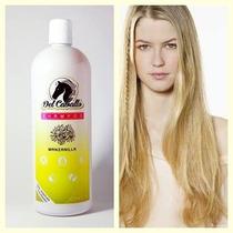Shampoo Para Caballo/ Humano/ Extractos Naturales/ El Mejor