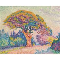 Lienzo Tela Paul Signac Pino Tropez 1909 Impresionismo 50x63