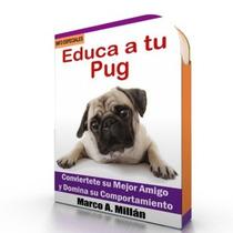 Como Educar A Un Pug - Guía De Adiestramiento Raza Pug