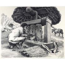 Alberto Beltran Litografia Moliendo Caña Azucar Tgp 1946 Mex