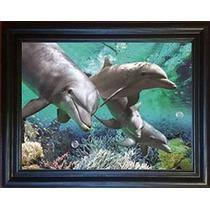 3d Art-3 Delfines Imagen Enmarcada - Amazing Life Like 3d Im