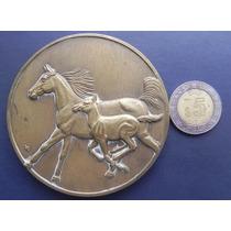Medalla Bronce Diseñada Por Lorenzo Rafael Caballos