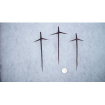 3 Cruz Espina Cruces Espinas Naturales 16cm