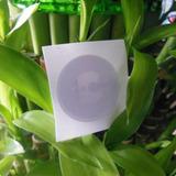 Etiqueta Nfc Ntag215 En Blanco Amiibo - Precio Por Pieza