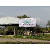 Jardinería Y Vivero De Ornamentales