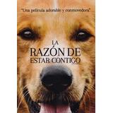 La Razon De Estar Contigo A Dog's Purpose Pelicula Dvd