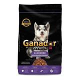 Alimento Ganador Premium Perro Cachorro Raza Mediana/grande 20kg