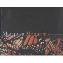 Mariposa Monarca. Lazos Que Nos Unen.