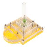 Caja Formicarium Granja Alimentación Hormiga Complimentos