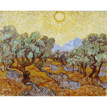 Lienzo Tela Campo Olivos Vincent Van Gogh Francia 50 X 63 Cm
