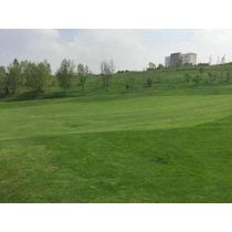 Excelente Terreno Con Vista Al Campo De Golf!!!!!