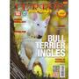Revista De Perros Bull Terrier Inglés Agosto 2015