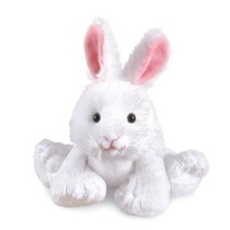Conejo Webkinz