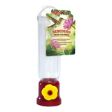 Bebedero Para Colibrí Mini 68ml. Alimentador Aves, Comedero