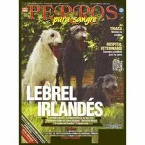 Revista Perro Pura Sangre Lebrel Irlandés Del 2013