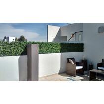 Follaje Artificial, Muros Verdes, Jardin Vertical, Plantas