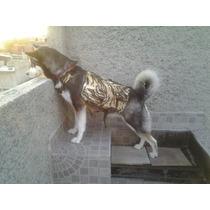Bag Pack Mochila Alforja Para Perro Peso Calidad Tactica