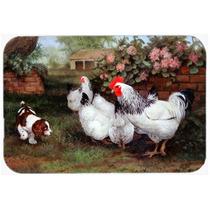 Las Gallinas Y Pollos, Del Perrito De La Cocina O El Baño M